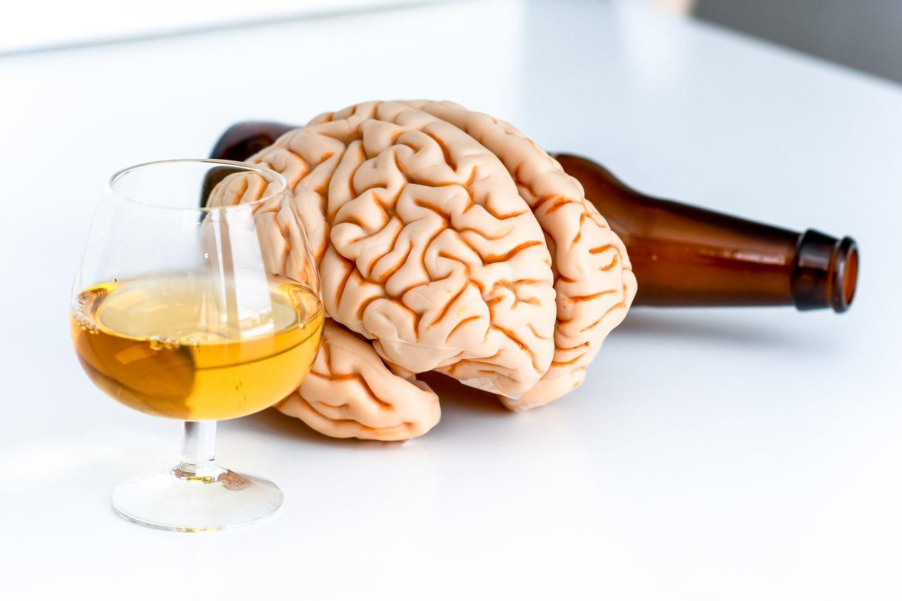 Как алкоголь влияет на мозг: последствия злоупотребления.